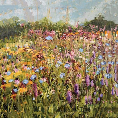 Summer Field with Scabious