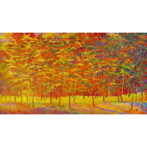 Yellow and Orange Forest