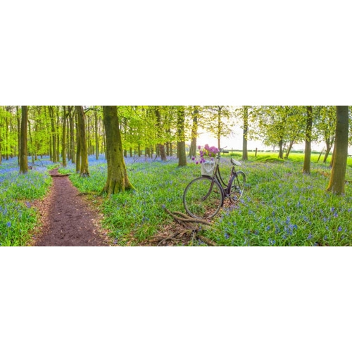Bicycle in spring forest with bunch of flowers