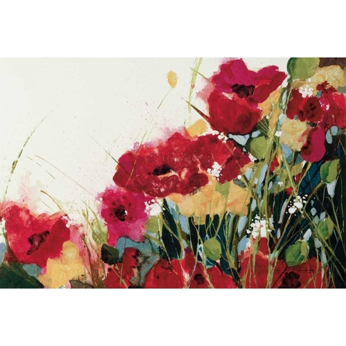 Poppies and Flowers on White