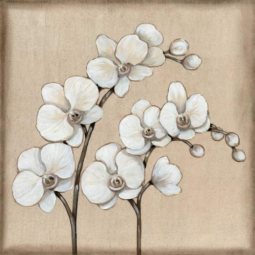 White Orchid II