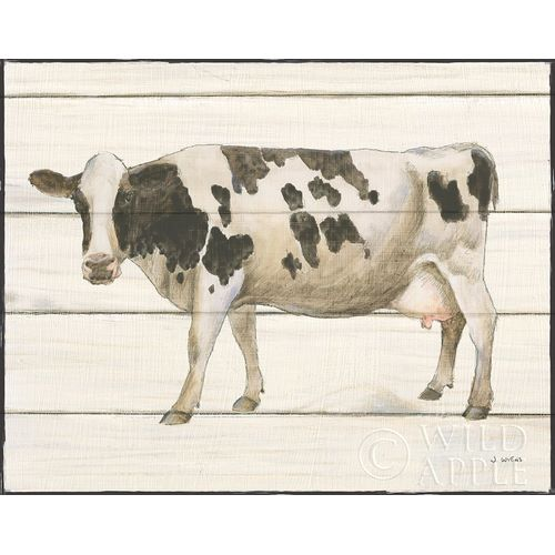 Country Cow VI