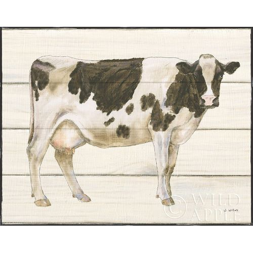 Country Cow VII